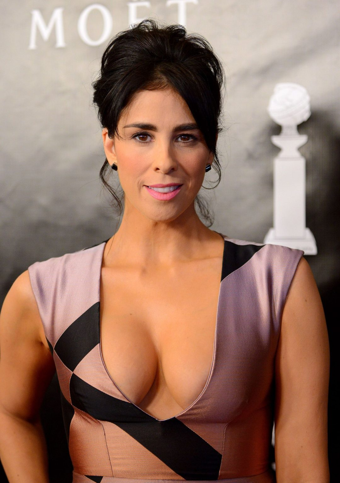 MILFy Brunette Sarah Silverman Showcasing Her Boobs in Public | #TheFappening Girls