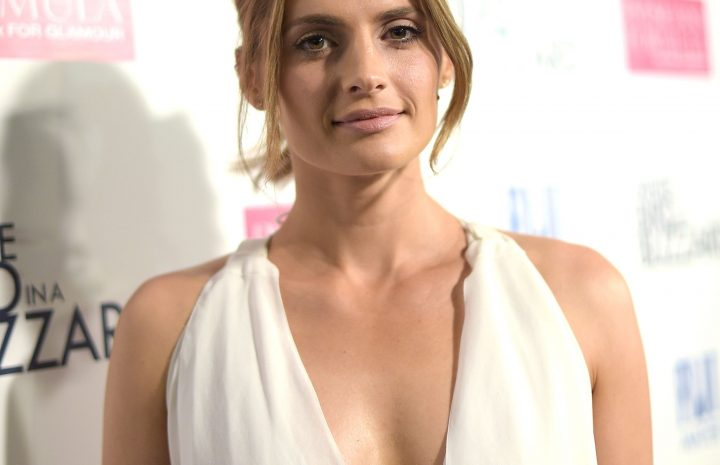 Graceful Beauty Stana Katic Showing Her Cleavage in a Nice-looking Dress