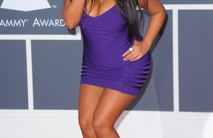 Snooki Looks Tanned and Exceptionally Slutty in an Eye-Catching Purple Dress