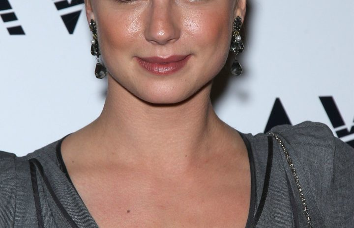 Hot Emily VanCamp Pictures: Blonde Beauty Shows Her Sideboob & More